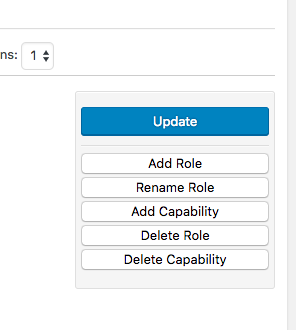 Update User Role Setting